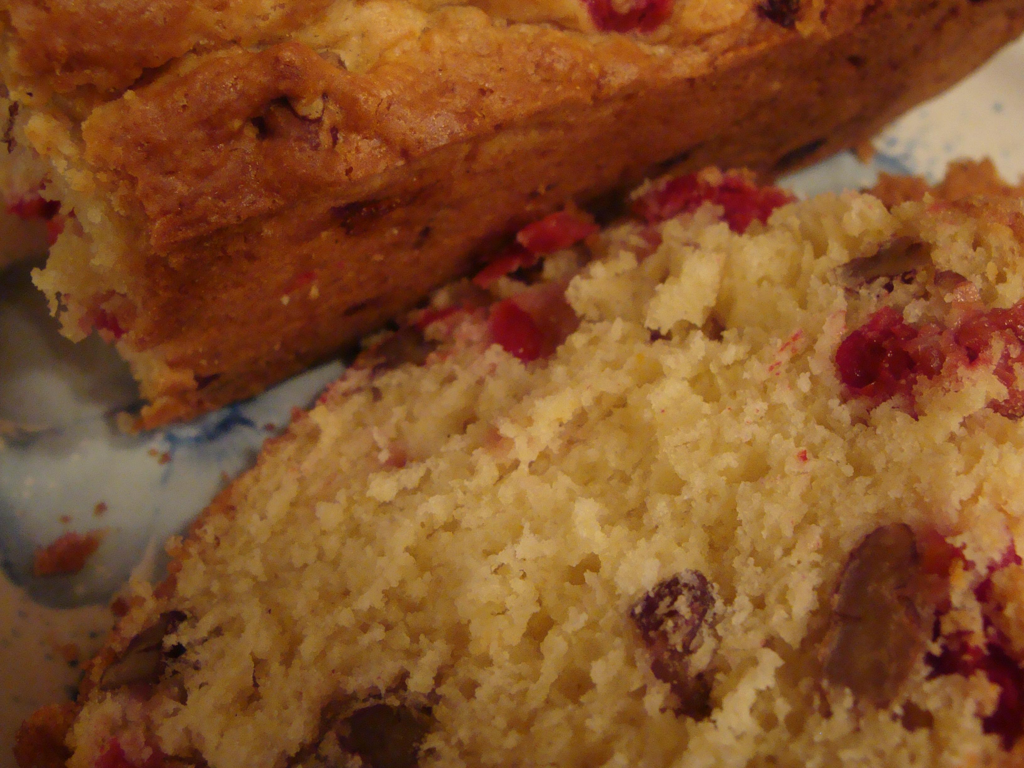 cranberry-bread-lemon-roast-chicken-005