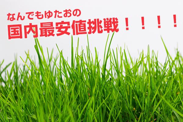 草むしり 安い 東京