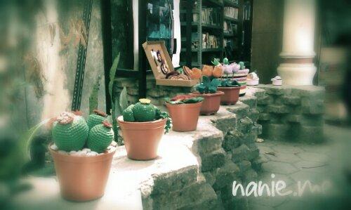 kaktus rajut