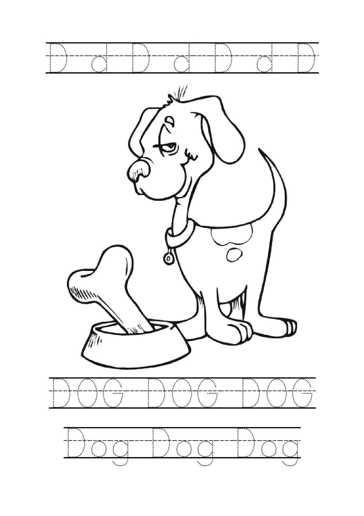 9 Best Pet Tracing Worksheets Images On Best Worksheets