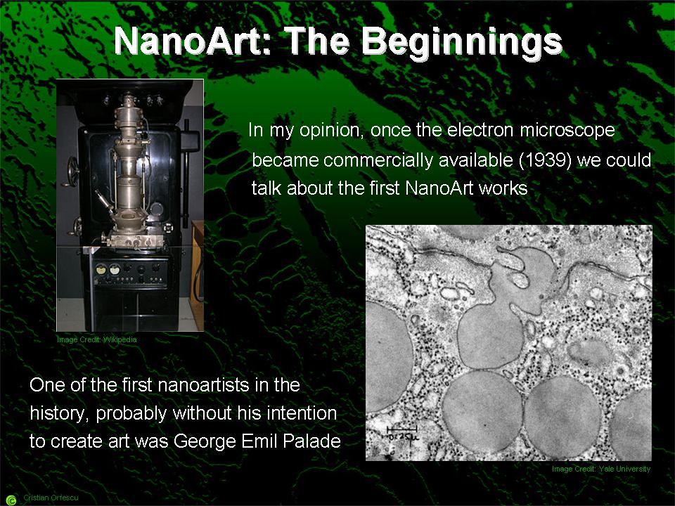 NanoArt-the beginnings-nanoart101-slide11