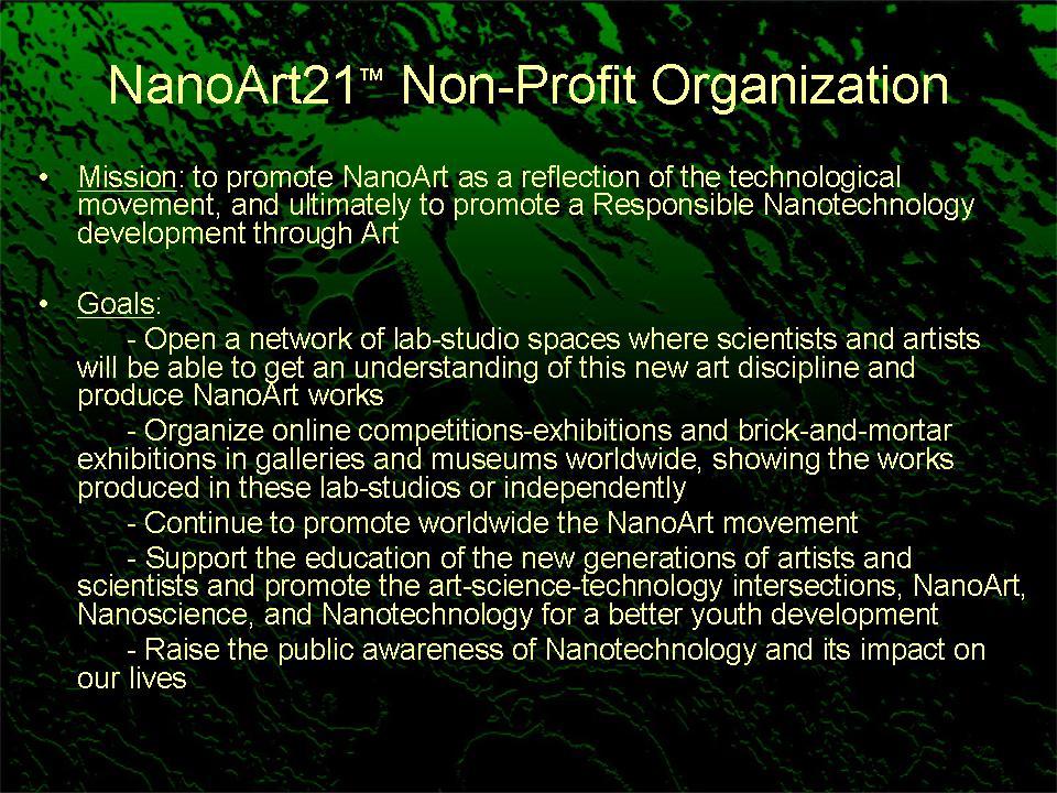 Nanoart-21-Non-Profit-Organization-Slide6