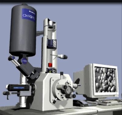 scanning electron microscope - academy of nanoart