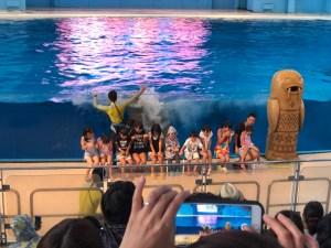 横浜・八景島シーパラダイス アクアスタジアム