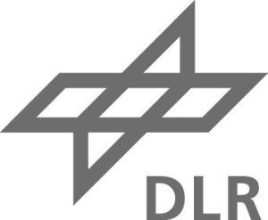 4_DLR-Signet_grau
