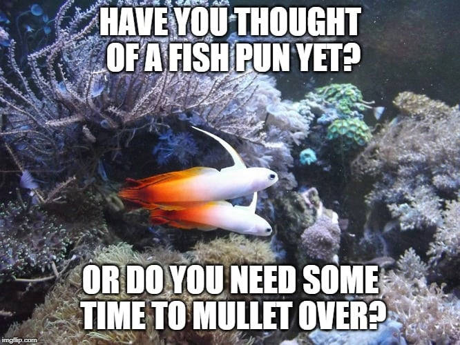 2020 S Best Funny Fish Puns Memes And Fishing One Liners Nano