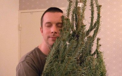 Bring out your dead … Christmas Trees