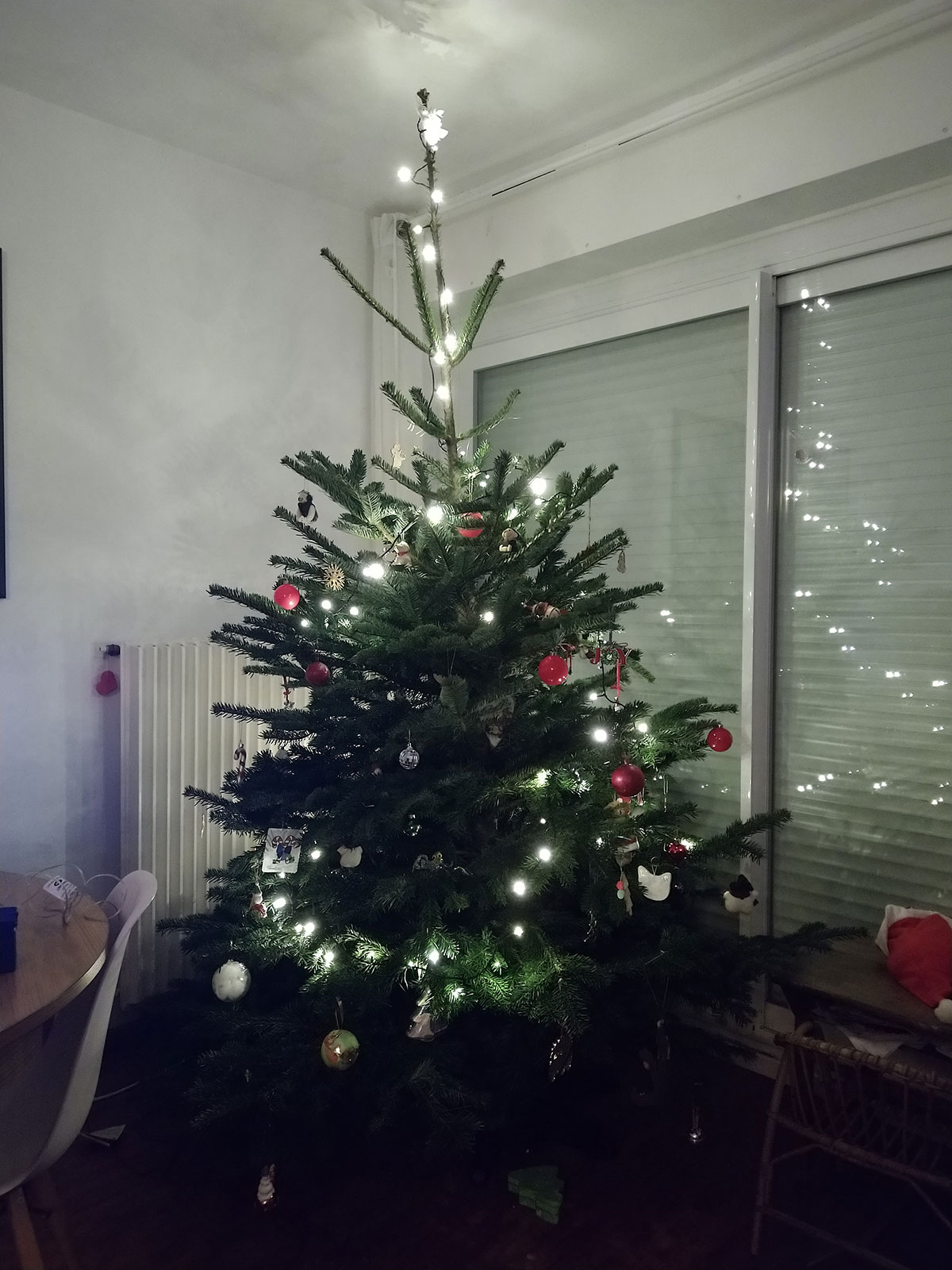 The Cheapest Christmas Tree in Nantes?