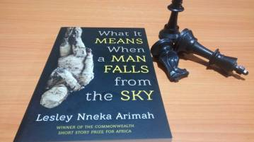 what it means when a man falls from the sky nneka Arimah
