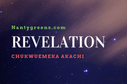 Revelation by Chukwuemeka Akachi published on Nantygreens.com