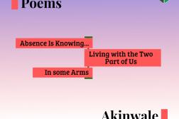 akinwale-peace-img