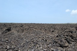 Lava rock as far as the eye can see
