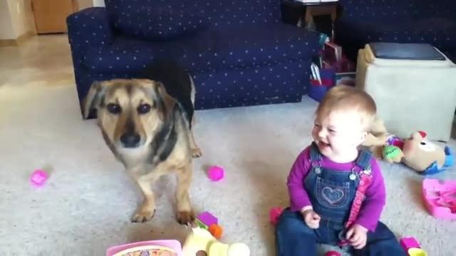 Малыш, собака и пузыри и всем весело