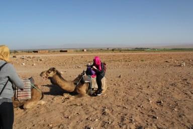 Angélica_Dromedário_deserto_zagora_marrocos