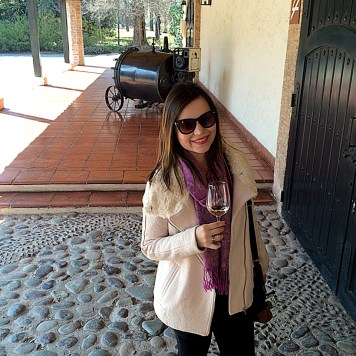 vina_concha_y_toro_santiago_chile-(3)