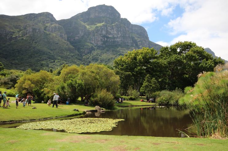 jardim-botânico-cape-town-africa-do-sul