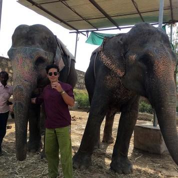 india_jaipur_elephant_village_nao_e_caro_viajar_vila_dos_elefantes_passeio_interacao