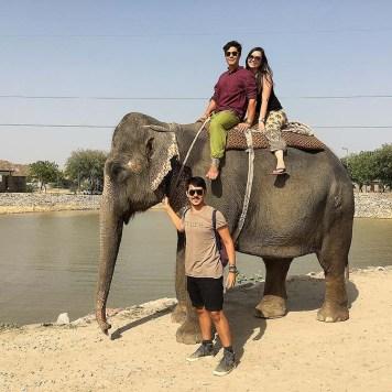 india_jaipur_elephant_village_nao_e_caro_viajar_vila_dos_elefantes_passeio_lago