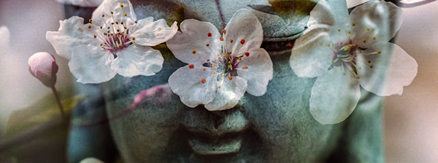 Article massage thai ou nuad boran