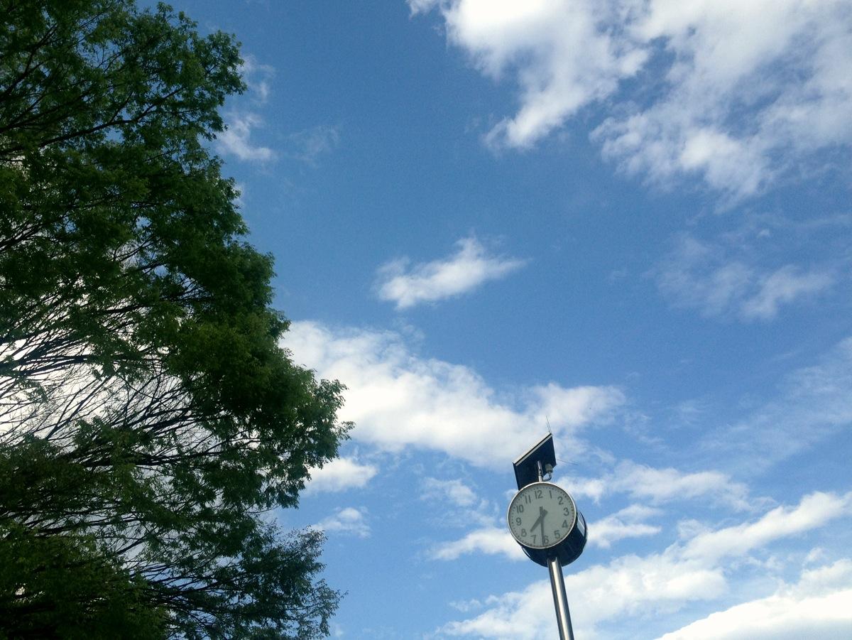 Yoyogi Park in the morning