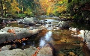 nature-landscapes_widewallpaper_serene-mountain-stream_19666