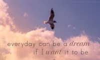 everyday can be a dream if I want it to be