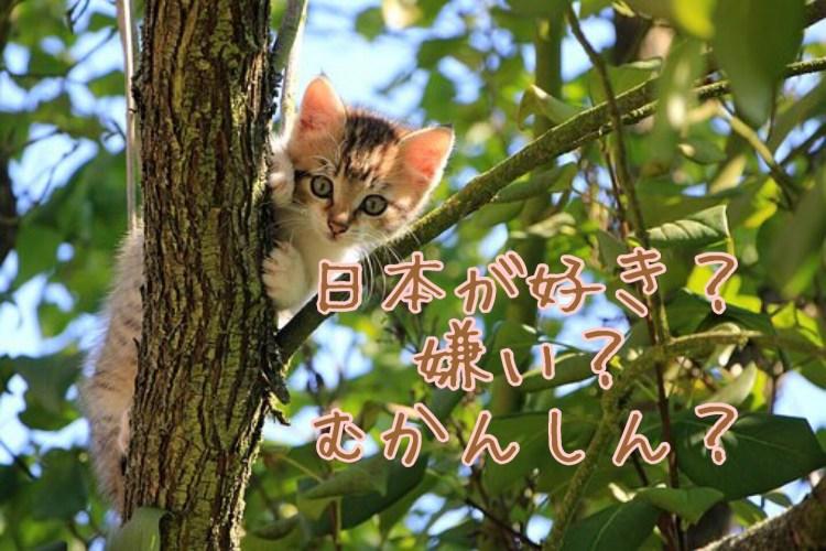 日本が好きだけど何をしたらいいのか分からない