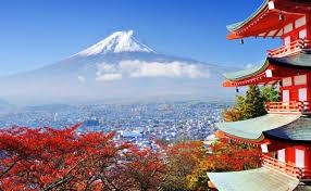 日本の事実、知ってますか?