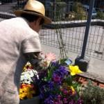 園芸療法、何からどうやって始めるか?