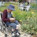 園芸療法と作業療法;新たな場所で