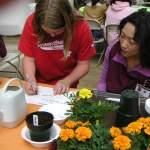 「園芸療法が学べる、園芸療法士になれる」学校は?本音のところ