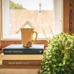 真夏の園芸療法プログラム。観葉植物がもたらすチカラ!
