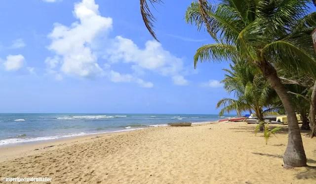 Litoral Norte da Bahia – quais praias, onde ficar e o que fazer em 5 dias?