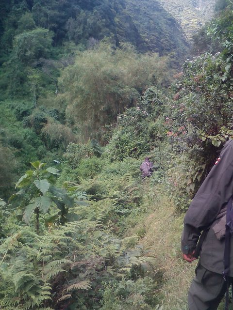 Gorge Walk2