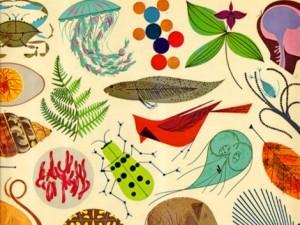 charley harper golden book of biology cover
