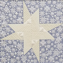 stardance needlepoint