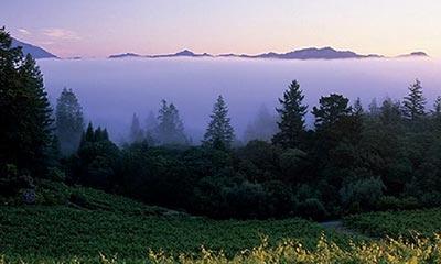Napa Valley Climate