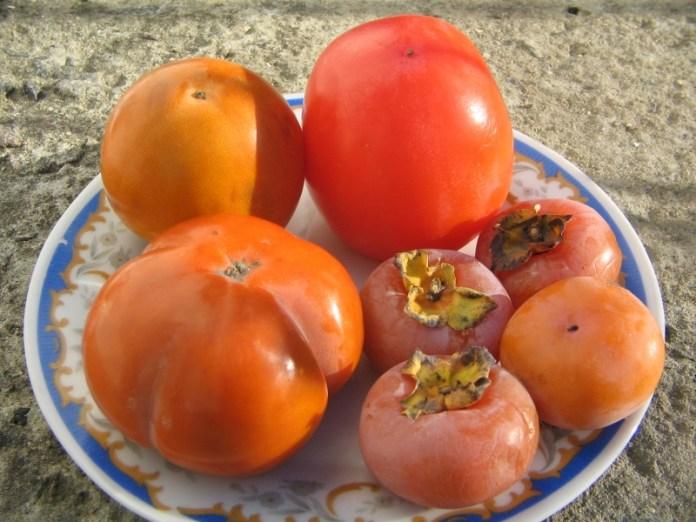 Садівник розповів про фрукти
