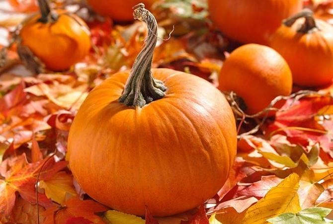 Одесситов приглашают на праздник урожая