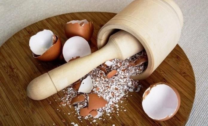 В чем польза яичной скорлупы?