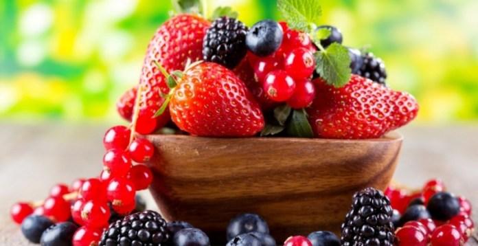 Уход за плодовыми кустарниками: важные рекомендации