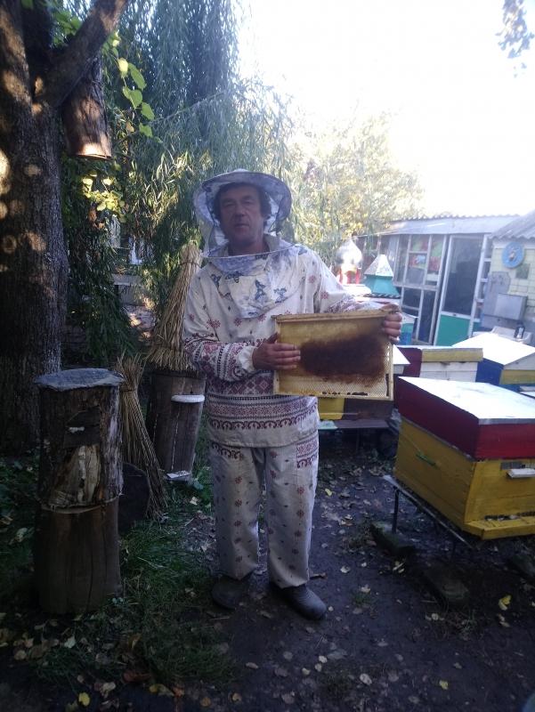 Пчеловод из Черкасской области поделился секретами покупки качественного меда