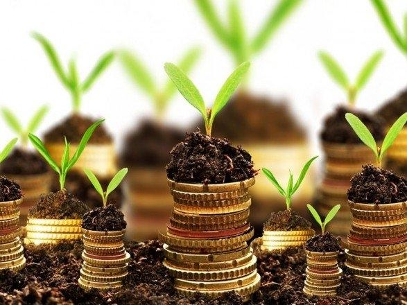 Рынок земли от Зеленского: что ждет аграриев и пайщиков?