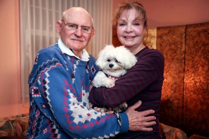 Пожилая американка лишила детей наследства ради собаки