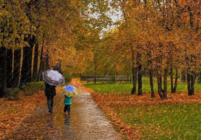 Погода в Україні на середу, 13 жовтня: дощова…