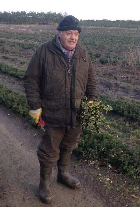 70-летний пенсионер выращивает тысячи елок