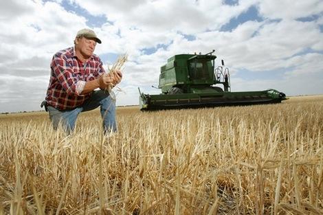 Фермеров обязали платить единый взнос