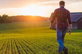 фермер обучение