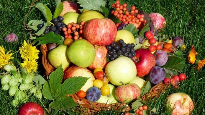 Ученые из Австралии создали упаковку для фруктов, которая долгое время сохраняет их свежими