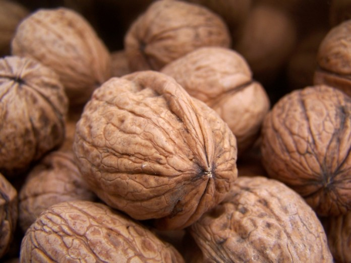 Украина вошла в ТОП-10 мировых производителей грецкого ореха